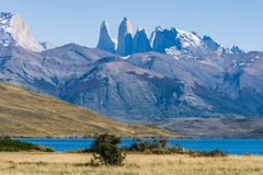 Beautiful view of aqua blue Laguna Azul with nature three tower mountains peak in clear blue sky in autumn, Torres del Paine. National park, south Patagonia royalty free stock photography