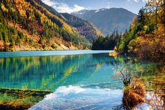 Beautiful view of the Arrow Bamboo Lake with azure water Stock Photography