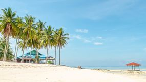 Free Beautiful View At Derawan Island, Indonesia. Coconut Tree And White Sand On The Beach Stock Image - 161419251