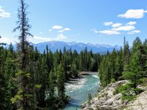 A beautiful view of the Athabasca River, visible from the Maligne Canyon trailhead. royalty free stock photography