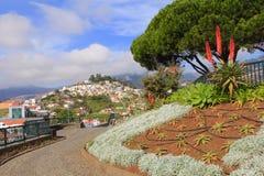 Scenic view at Pico dos Barcelo Stock Image