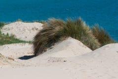 Beautiful view on beach and ocean, Spain, Tarifa Stock Images