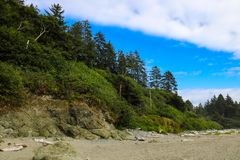 Beautiful view of the beach in the Olympic National Park, Washington, USA royalty free stock photography