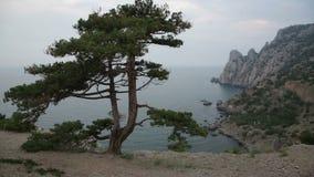 Beautiful view of Blue bay from cape Kapchik in Crimea stock video