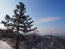 Beautiful view from Buda Mountains. Hungary in wintertime stock photo