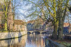 View of a canal with ducks swimming and trees with a blue sky royalty free stock photography