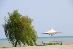 Beautiful view of the Caspian Sea. Photo of Beautiful view of the Caspian Sea in Ramsar city in Islamic Republic of Iran, and Umbrella and terrace and a tree and royalty free stock image