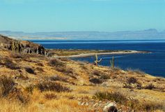Mexico, BaJa- Panoramic Landscape Where Desert Meets Sea. A beautiful view of the coastline of BaJa, Mexico with mountains on the peninsula at the horizon Royalty Free Stock Photos