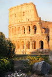 Beautiful view of Coliseum, Italy Stock Photography