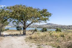 Beautiful view of a dirt road leading to a lake with a tree stock photos