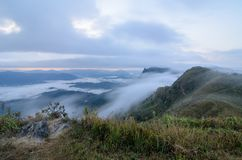 View of Doi Pha Tang in the morning with sea of fog in Chiang Rai, Thailand. Beautiful view of Doi Pha Tang in the morning with sea of fog in Chiang Rai stock photography