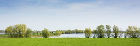 Beautiful view on a dutch landscape near the river Waal and Zaltbommel, water, green grass, meadows and trees on a sunny day. Beautiful view on a typical dutch Royalty Free Stock Photo