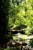 Beautiful view of the El Nicho valley. Cienfuegos, Cuba royalty free stock image