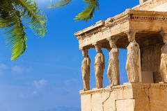Beautiful view of Erechtheion with palm in Athens Royalty Free Stock Image