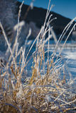 Beautiful view of field at farm covered by frost Stock Photo