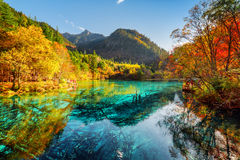 Beautiful view of the Five Flower Lake with azure water Royalty Free Stock Photography