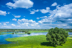Beautiful view on flowed field in spring Stock Photos