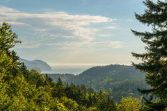 Beautiful view Fundy Shore scenery from Dickson Falls Trail look Stock Photography