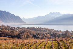 Beautiful view on Geneva Lake and Alps Stock Photography