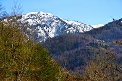 Wonderful view of Georgian nature Royalty Free Stock Photos
