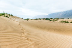 Beautiful view of golden sand in Lanzarote dune, Canary Island royalty free stock photography