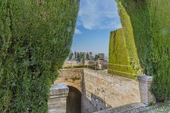 Beautiful view of a green bush in front of some stone stairs. A part of the Alhambra in Granada Spain on a sunny day with a blue sky stock photo