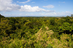 Beautiful view of the green Cuban countryside Stock Image