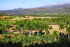 Beautiful view of the green Cuban countryside, Cuba Royalty Free Stock Photography