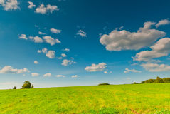 Beautiful view of green field Royalty Free Stock Images