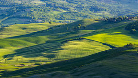 Beautiful view of green fields and meadows at sunset in Tuscany Stock Image