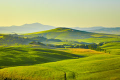 Beautiful view of green fields in Tuscany Stock Photo