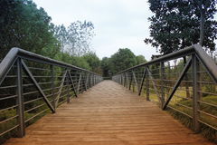 Beautiful view with green way and wooden bridge which close  hometown Stock Images