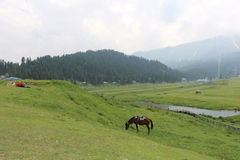 Beautiful view of Gulmarg stock images
