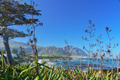 Beautiful view of Hermanus Stock Photo