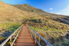 Madeira hiking footpath trail stock photos
