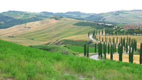 Beautiful view of hilly Tuscany Field with farm house. Green wave hills, line of Cypresses tree and meadows in Italy stock video footage
