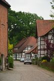 Wienhausen small town Germany park tree flower royalty free stock photo
