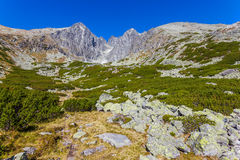 Free Beautiful View In The Tatra Mountains Royalty Free Stock Image - 35323676