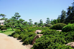 Beautiful view of Japanese Garden Royalty Free Stock Photography