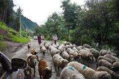 Beautiful view at at Kashmir, India.