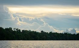 Scenic view of Kinabatangan river. Beautiful view of Kinabatangan river in Sabah, cloudscape and jungle before sunset Stock Photos