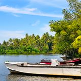 Beautiful view of Lake Bentota, Sri Lanka, on a sunny day. Beautiful view of Lake Bentota, Sri Lanka, on a sunny, clear day royalty free stock photo