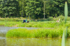 Beautiful view of lake, fishing rods, green forest , blue sky. Fishing in lake, concept of a rural getaway and fishing. For modern nature background, backdrop Stock Images