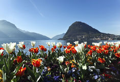 Beautiful view of lake Lugano Royalty Free Stock Photos