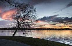 Beautiful view of the lake. From the pedestrian zone. Hatanpää arboretum, Tampere, Finland Royalty Free Stock Photo