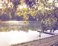 Beautiful view of the lake Royalty Free Stock Image
