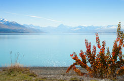 Beautiful view of Lake Tekapo in autumn Stock Photos