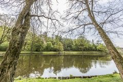 Beautiful view of a lake with two trees as frame and green vegetation. Background with reflections in the water on a wonderful day in the Netherlands stock photography