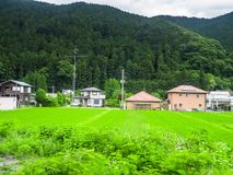 Beautiful view of a land with grass and some houses in the horizont near of a rice fields in Japan.  Stock Photo