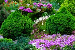 Beautiful view of the landscaped garden in the backyard. Landscaping landscaping area in summer stock images